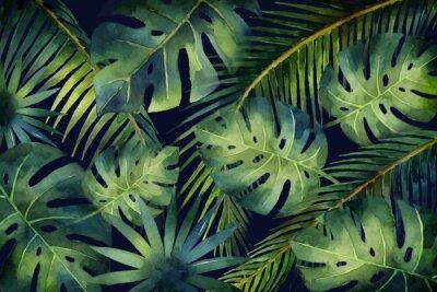 Carta da parati Foglie e rami tropicali dell'insegna di vettore dell'acquerello isolati su fondo scuro.