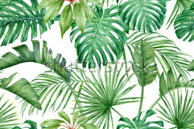 Carta da parati Foglie tropicali Monstera, strelitzia, palme. Acquerello modello senza soluzione di continuità.