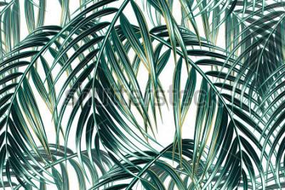 Carta da parati Fondo floreale del modello di vettore senza cuciture delle foglie di palma tropicali