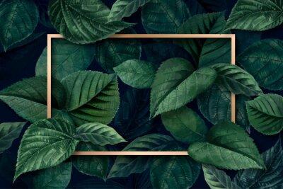 Carta da parati Forest leaf frame