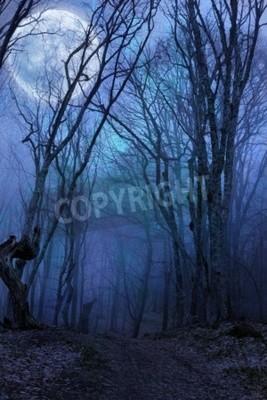 Carta da parati foresta di notte oscura agaist luna piena