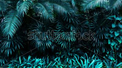 Carta da parati foresta tropicale foglia bagliore sullo sfondo scuro. Contrasto
