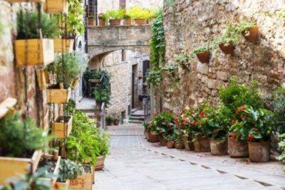 Carta da parati Fotografia con effetto Orton di una strada con piante e fiori nella città storica italiana di Spello (Umbria, Italia)