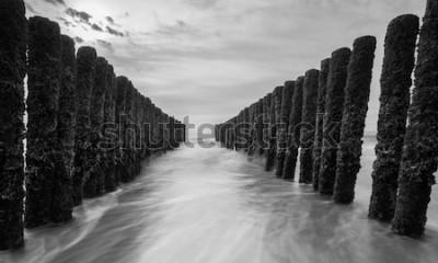 Carta da parati frangiflutti al mar baltico nei colori bianco e nero