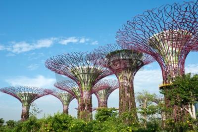 Carta da parati Gardens by the Bay, Singapore