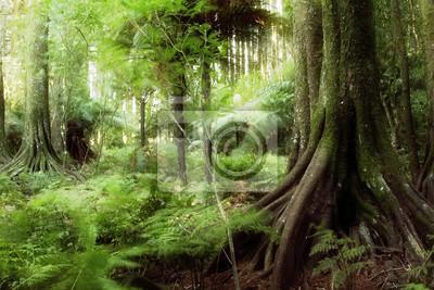 Carta Da Parati Foresta Tropicale : Giungla carta da parati u carte da parati foresta tropicale a