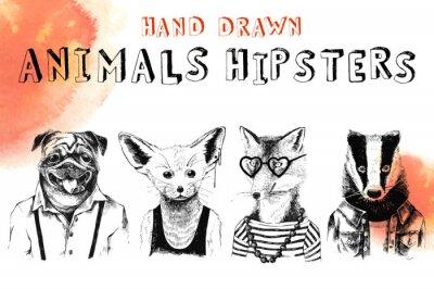 Carta da parati Gli animali hip drawn hip gestito