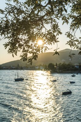 Carta da parati Gli ulivi, il mare e il tramonto