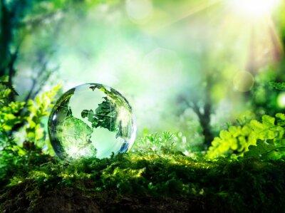 Carta da parati globo di cristallo sul muschio in una foresta - concetto di ambiente
