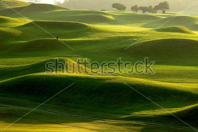 Carta da parati golf place with nice green