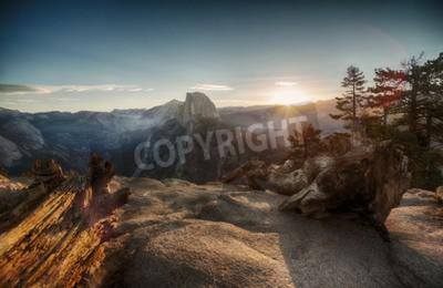 Carta da parati Half Dome e Yosemite Valley in Yosemite National Park durante il tramonto colorato e vecchi tronchi d'albero