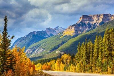 Carta da parati Highway a Banff