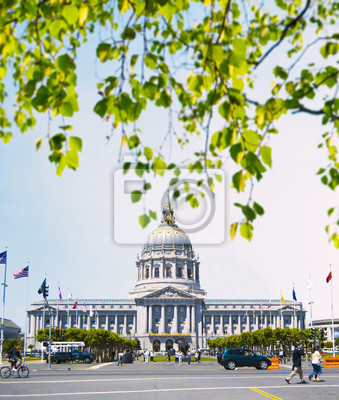 Carta da parati Il municipio di San Francisco dietro i rami di un albero.