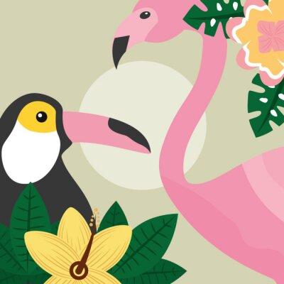 Carta da parati Illustrazione tropicale di vettore dei tucani e del fenicottero degli uccelli di ora legale