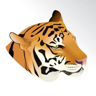Carta da parati illustrazione vettoriale di testa ritratto di tigre isolato su sfondo bianco.