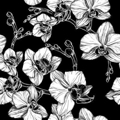 Carta da parati in bianco e nero seamless con disegno a mano fiore di orchidea