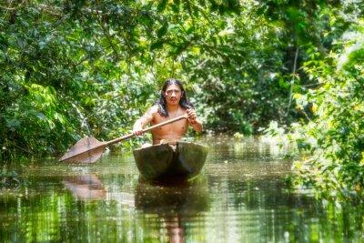Carta da parati Indigena canoa di legno