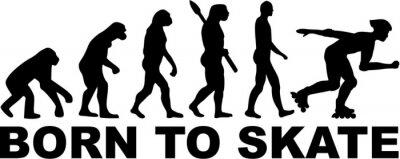Carta da parati Inline Skating Evolution