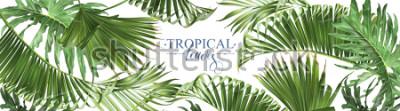 Carta da parati Insegne tropicali orizzontali delle nebbia di vettore su fondo bianco. Esotico botanico per cosmetici, spa, profumi, prodotti per la cura della salute, aroma, invito a nozze. Meglio come banner