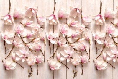 Carta da parati kwiat magnolii, kwiat, roślina, biała, beuty, galąź, drzewo magnolii, kwiatowy, fiolet, kwitnienie, flora, botanika, ornament z magnolii, kompozycja magnolii, układ kwiatów magnolii, pąki magnolii, fl
