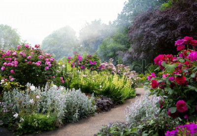 Carta da parati L'arte fiorisce di mattina in un parco inglese