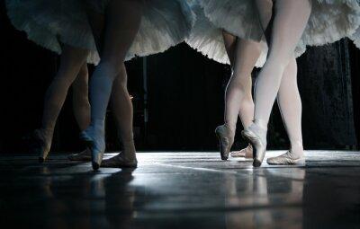 Carta da parati La ballerina