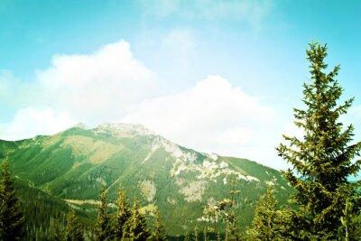 Carta da parati La natura in montagna.