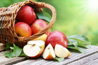 Carta da parati Le mele in un cesto con il sole