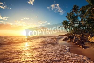 Carta da parati Le palme sulla spiaggia tropicale, girato alba