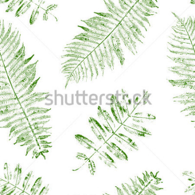 Carta da parati Leaves of mountain ash and fern. Seamless pattern with leaf prints. Vector illustration.