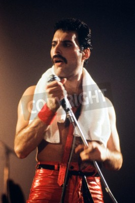 Carta da parati Leiden, Paesi Bassi - 27 novembre, 1980: Freddy Mercury cantante della band britannica regina durante un concerto nel Groenoordhallen a Leiden, nei Paesi Bassi