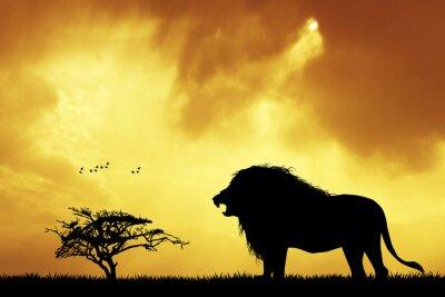 Carta da parati Leone silhouette al tramonto