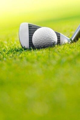 Carta da parati Let's golf