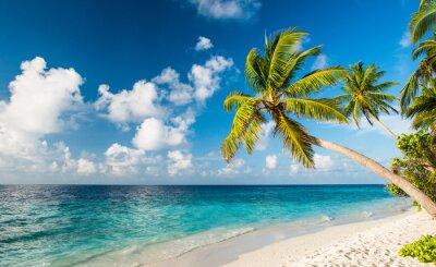Carta da parati Lonely spiaggia alle Maldive