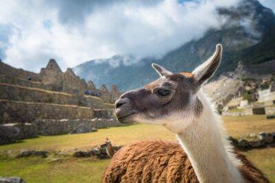 Carta da parati Machu Picchu, patrimonio mondiale dell'UNESCO. Una delle Nuove Sette Meraviglie del mondo
