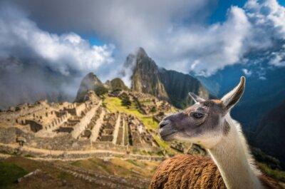 Carta da parati Machu Picchu, patrimonio mondiale dell'UNESCO. Una delle nuove Sette W