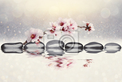 Carta da parati mandorle fiori sfondo