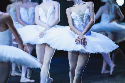 Carta da parati Mani di ballerine. Mani di ballerine. dichiarazione Ballet. Grandi ballerine. Ballerine in movimento.