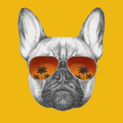 Carta da parati Mano Ritratto di Bulldog francese disegnato con gli occhiali da sole a specchio. Vettore isolato elementi.