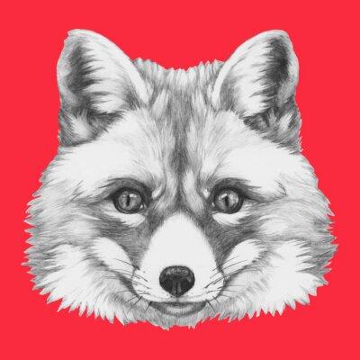 Carta da parati Mano Ritratto di Fox disegnato con gli occhiali. Vettore isolato elementi.
