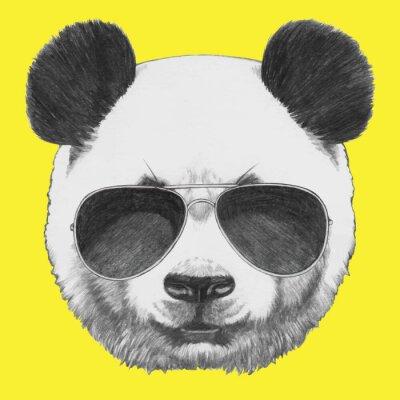 Carta da parati Mano Ritratto di Panda disegnato con gli occhiali da sole. Vettore isolato elementi.