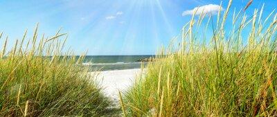 Carta da parati Mar Baltico - dune e mare