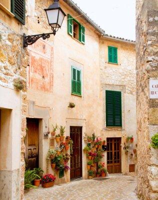 Carta da parati Medieval Valldemosa villaggio tradizionale di Maiorca