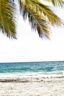 Carta da parati Mer, antille, caraibe, tropiques ...