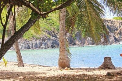 Carta da parati Mer, antille, caraibi, tropici ...