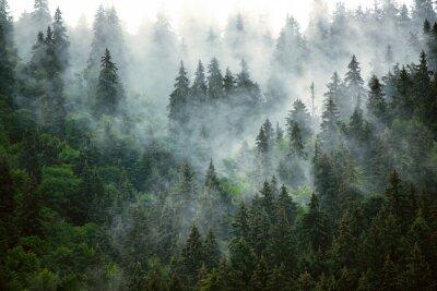 Carta da parati Misty mountain landscape