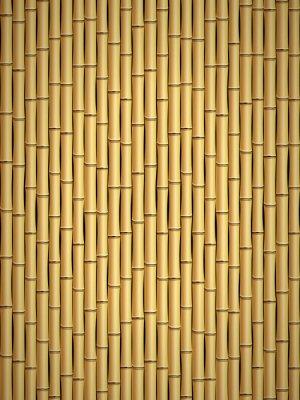 Carta da parati modello di bambù