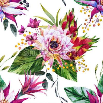 Carta da parati modello tropicale dell'acquerello, fiore di cactus, Messico, frutto del drago, bacche gialle