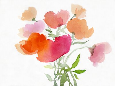 Carta da parati Mohnblumen Malerei aquarell
