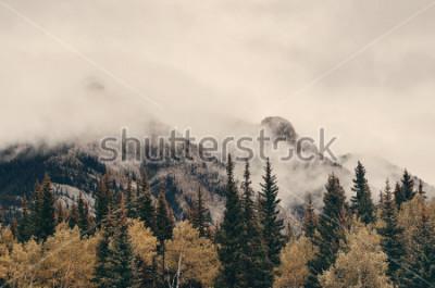 Carta da parati Montagne e foreste nebbiose del parco nazionale di Banff nel Canada.